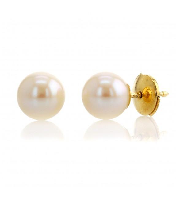 Boucles d'oreilles perles d'eau douce 8-8,5 mm Or jaune 750/00