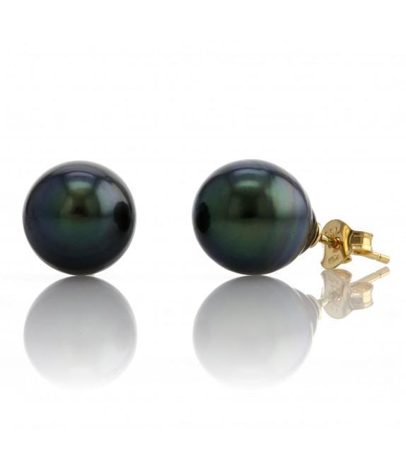 Boucles d'oreilles perles de Tahiti 9,5-10 mm Or jaune 750/00