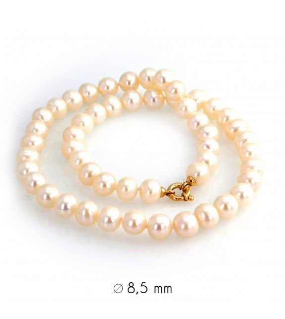 Collier perles d'eau douce 8-8,5 mm or jaune 750/00